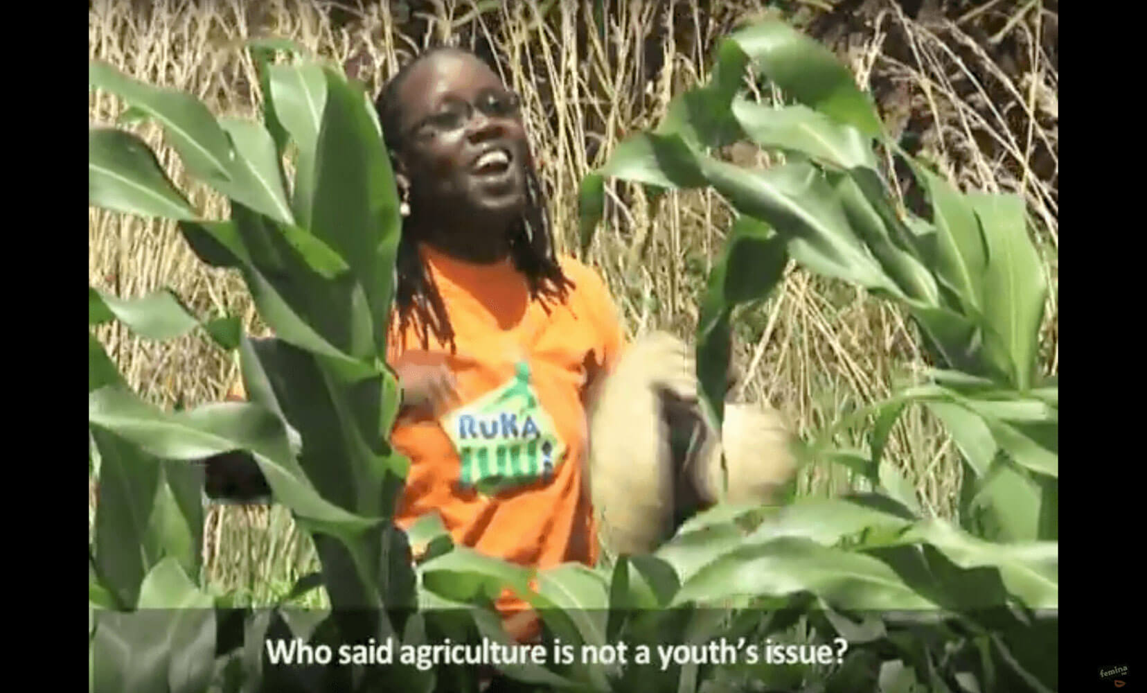edutainment, Ruka Juu, communication for development, C4D, agriculture, entrepreneurship, youth