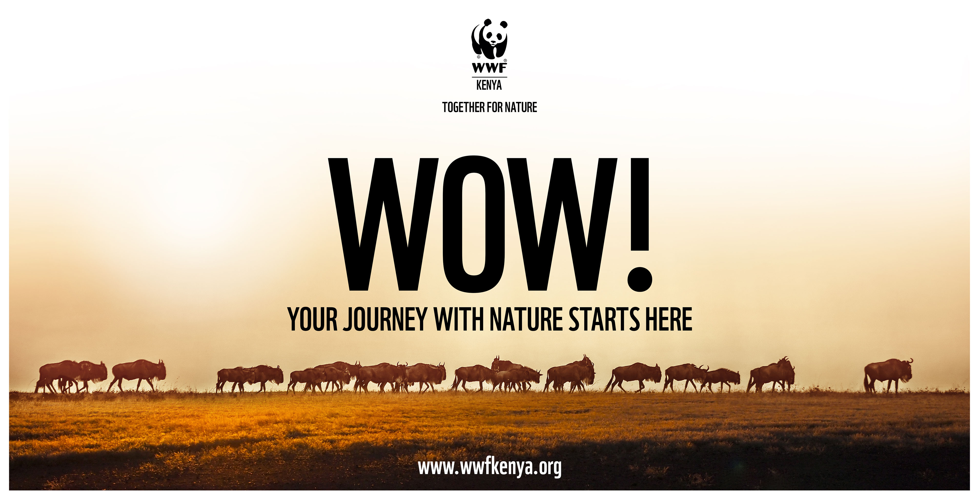 WWF billboard for its Kenya launch