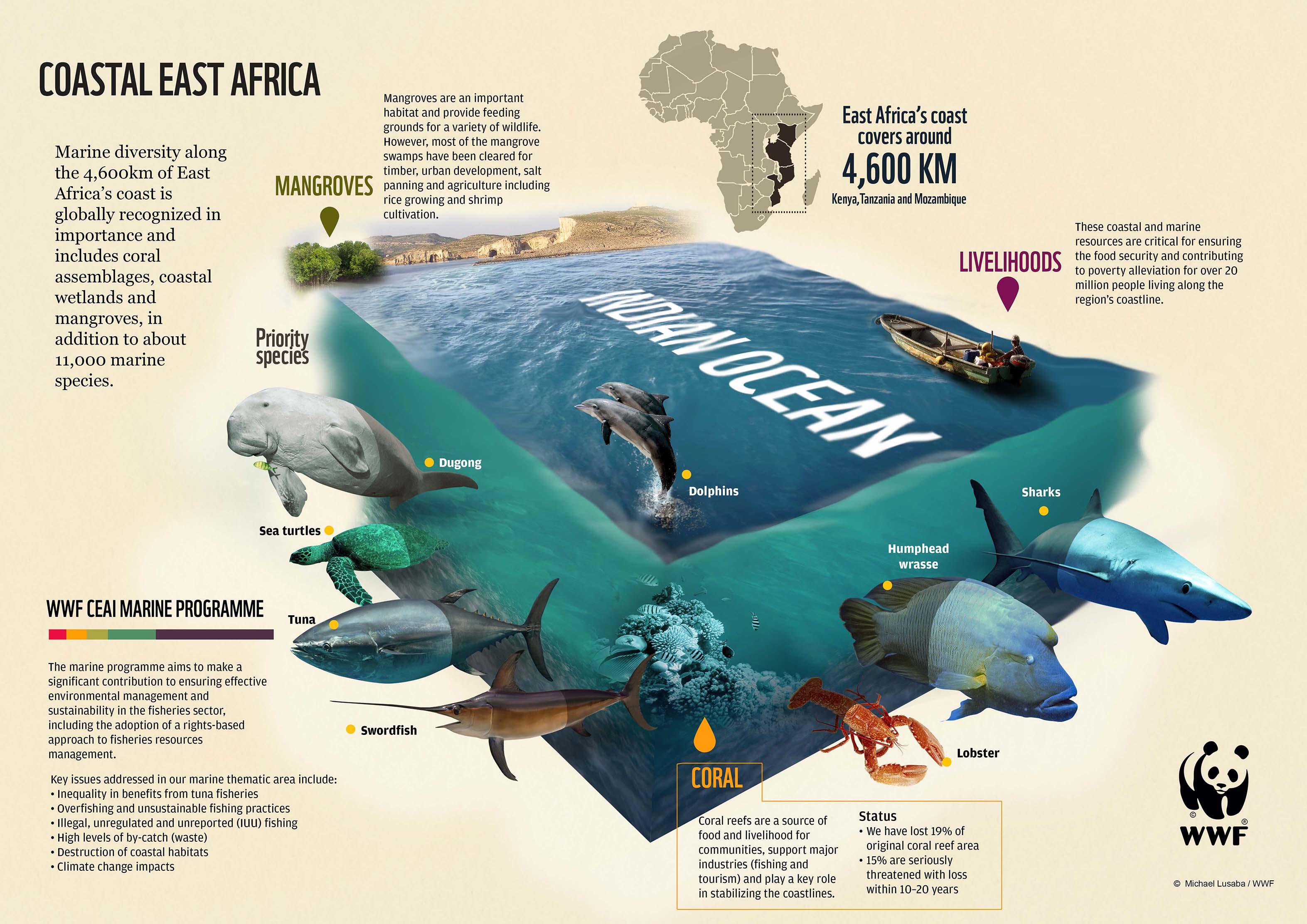 WWF Coastal East Africa infographic